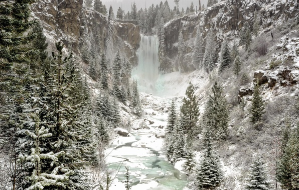 Picture winter, forest, snow, nature, waterfall