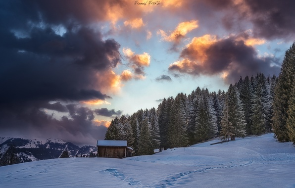 Picture winter, forest, the sky, clouds, snow, mountains, Alps, house