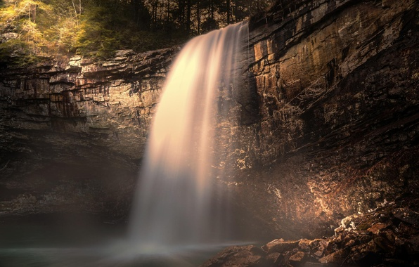 Picture forest, nature, rock, waterfall