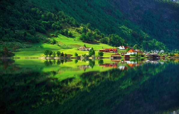 Picture greens, forest, summer, lake, reflection, home, Nature, village