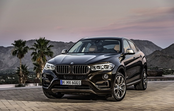 Picture car, jeep, SUV, rechange, BMW X6, xDrive50i