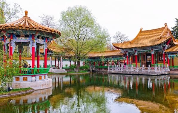 Picture pond, Park, tree, Switzerland, gazebo, Switzerland, Zurich, Zurich, Chinese Garden