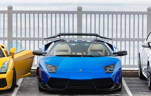 Picture bmw, Roadster, Lamborghini, Gallardo, yellow, blue, Murcielago