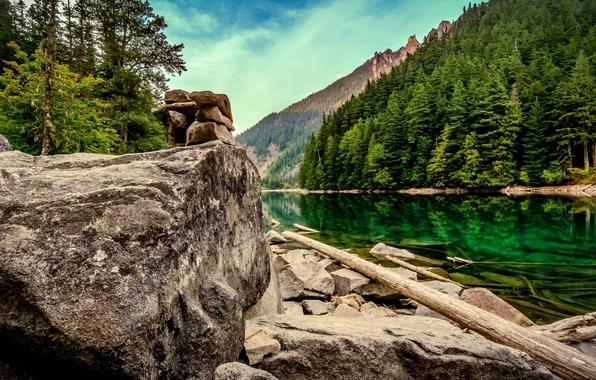 Picture forest, lake, stones, Canada, Canada, British Columbia, logs, boulders, British Columbia, Lindeman Lake, Chilliwack Lake …
