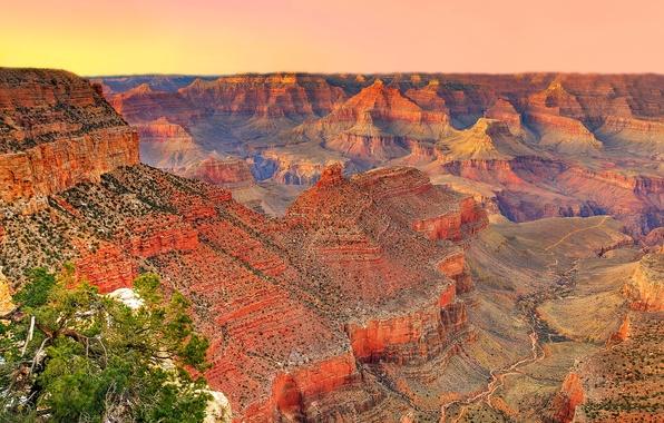 Picture the sky, sunset, mountains, tree, canyon, AZ, USA, USA, Grand Canyon National Park