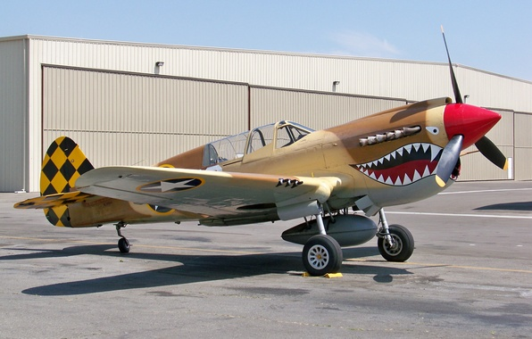 """Picture fighter, during the Second world war, Curtiss P-40, """"Tomahawk""""American"""