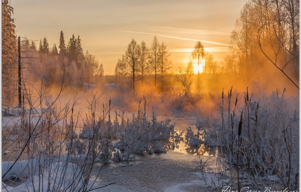 Picture frost, Winter sunset, evening on the river