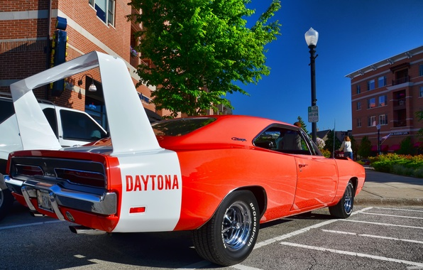 Picture Dodge, Muscle, 1969, Dodge, Car, Charger, The charger, Daytona, Daytona