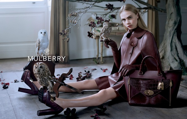 Picture leather, handbag, owls, brand, Mulberry, Cara Delevingne
