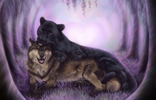 Picture animals, wolf, predators, Panther, art, friendship, black