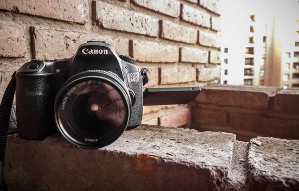 Picture macro, camera, Canon