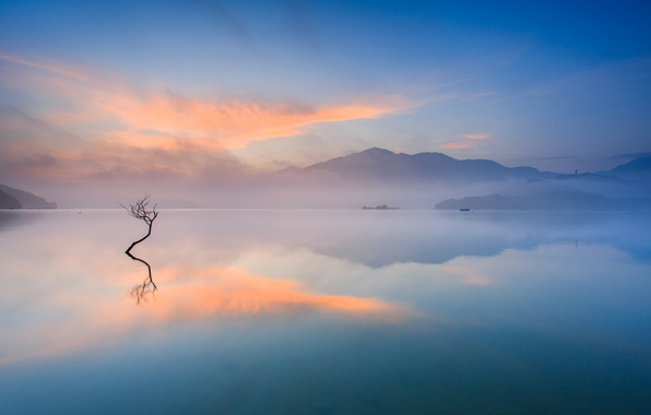 Picture mountains, fog, lake, tree, morning, couples