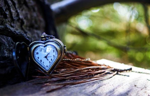 Picture arrows, heart, watch, love, dial, heart, autumn, clock
