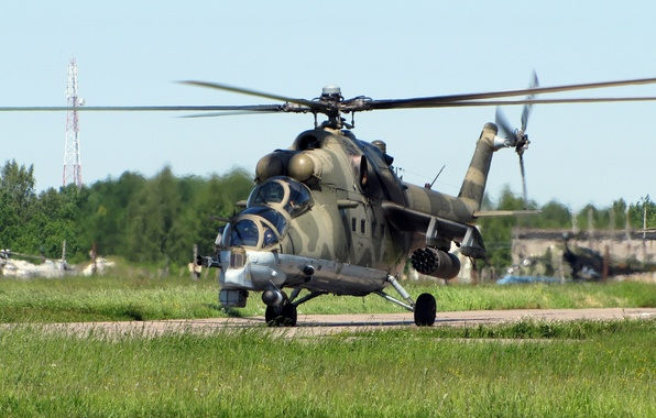 Picture grass, crocodile, helicopter, mi-24, the airfield, transport-combat