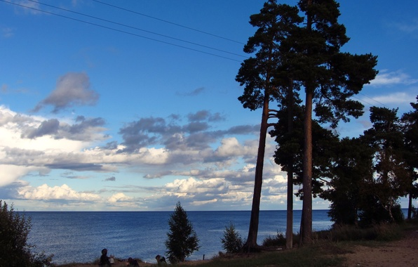 Picture the sky, clouds, trees, nature, lake, photo, Russia, Ladoga