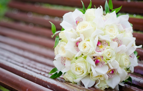 Picture flowers, bench, roses, bouquet, shop, white, orchids