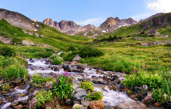 Picture grass, flowers, mountains, stream, stones, valley, USA, Colorado