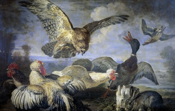 Picture animals, birds, picture, rabbit, duck, chickens, Attack Of The Kite, David Koninck