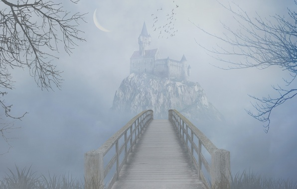Picture grass, trees, birds, bridge, fog, rock, castle, the darkness, Crescent