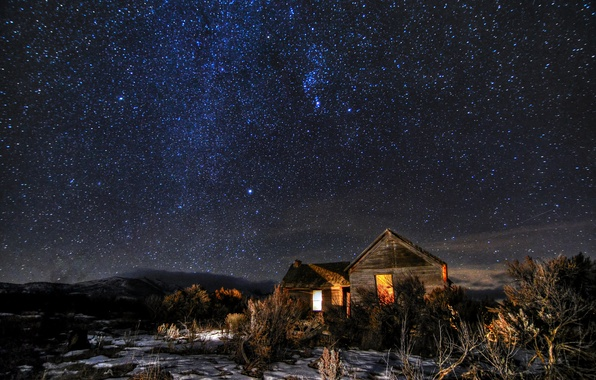 Picture space, stars, night, houses, the bushes