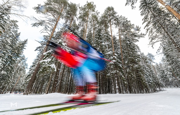 Picture winter, forest, speed, biathlon, biathlete