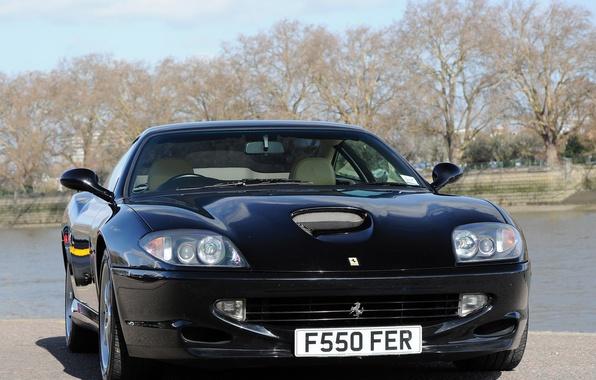 Picture trees, black, front view, Ferrari 550, Ferrari 550 Maranello