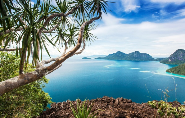 Picture sea, the sky, clouds, mountains, branches, tropics, stones, rocks, coast, beauty, horizon, the bushes, the …
