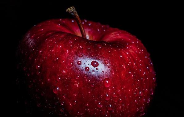 Picture macro, background, Apple
