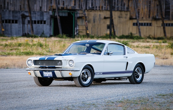 Picture Mustang, Ford, Shelby, Prototype, Mustang, Ford, Shelby, 1965, GT350