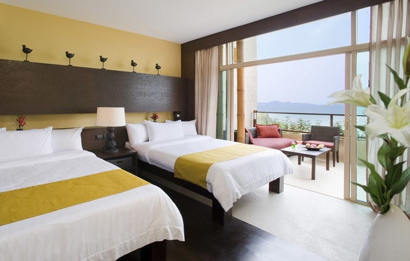 Picture hotel, room, bed