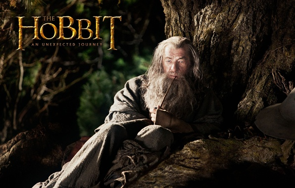 Picture grey, tree, tube, MAG, beard, actor, Gandalf, Gandalf, The hobbit, Ian McKellen, The Hobbit, Ian …