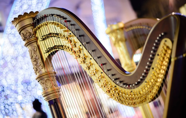 Picture strings, music, blur, sound, harp, concert, tool, music, bokeh, musical, live, which, wallpaper., instrument, onions, …