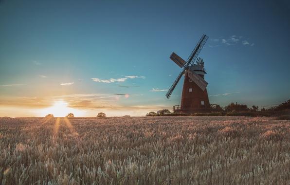 Picture field, the sun, sunrise, morning, mill, wind