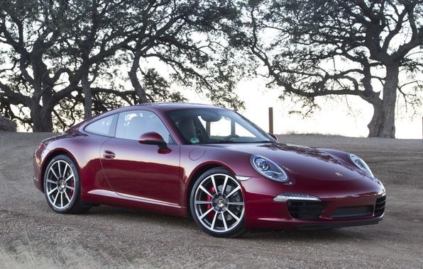 Picture the sky, trees, coupe, 911, supercar, ears, supercar, porsche, Porsche, coupe, the front, Burgundy, carerra …
