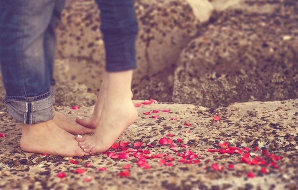 Picture love, feet, petals, pair, love, happy, people, romantic, couple