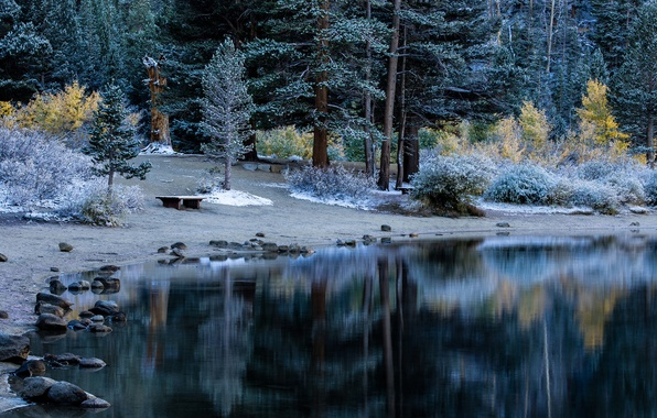 Picture frost, autumn, forest, trees, lake, Park, table, bench