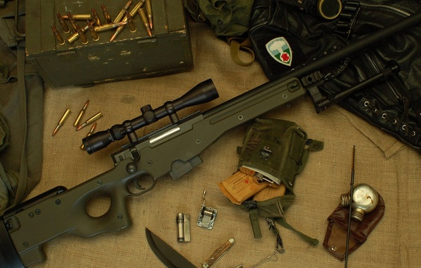 Picture cartridges, Arctic Warfare, Accuracy International L96, sniper rifle of English manufacture