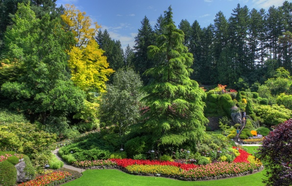 Picture greens, trees, flowers, stones, lawn, garden, Canada, ladder, track, the bushes, beds, Victoria, Butchart Gardens