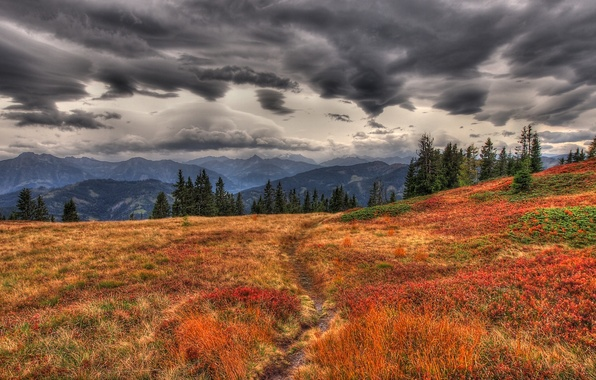 Picture autumn, grass, mountains, clouds, overcast, track, path, yellow, dry, trail