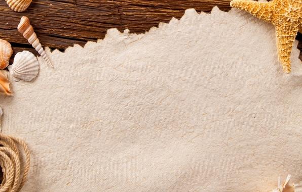 Picture paper, Board, rope, shell, starfish, shells, starfish