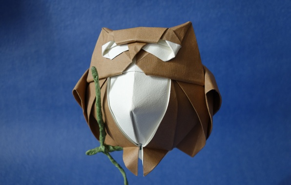 Picture paper, background, owl, origami