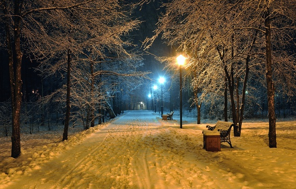 Picture road, landscape, bench, night, nature, lights, lights, Park, mood, lantern, seat, benches, road, landscape, nature, ...