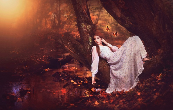 Picture forest, girl, butterfly, art