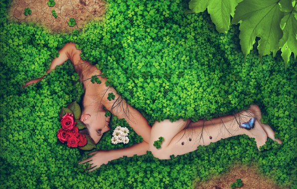 Picture greens, leaves, girl, drops, flowers, Rosa, creative, butterfly, roses, lies, chrysanthemum, in the grass, ladybugs