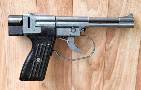 Picture weapons, trunks, view, trunk, cartridge, gun, pistol, side, super, underwater, action, special, underwater, without, complex, …