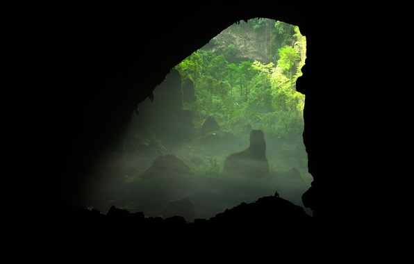 Picture trees, people, silhouette, cave, Vietnam