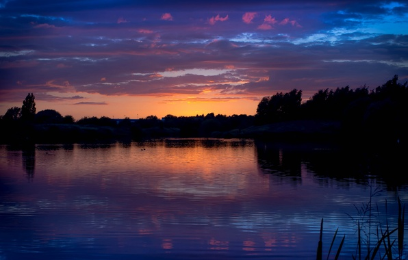 Picture forest, summer, the sky, clouds, trees, sunset, nature, shore, the evening, River