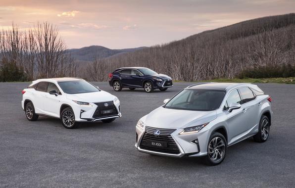 Picture Lexus, Lexus, crossover