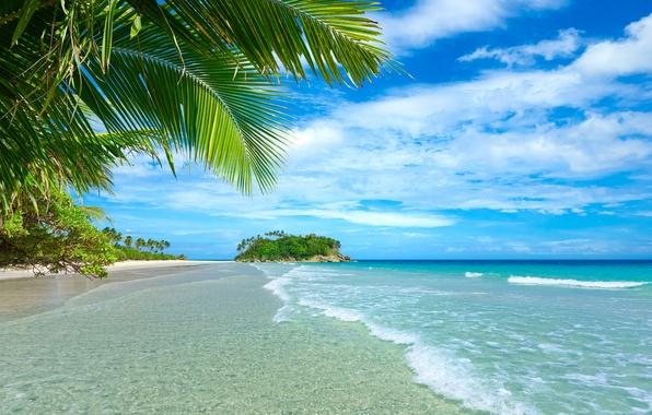 Picture sand, sea, beach, summer, palm trees, summer, beach, sea, sand, paradise, vacation, palms, tropical