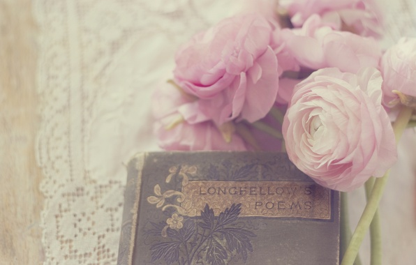 Picture flowers, petals, book, pink, white, buds, buttercups, ranunculus, poem